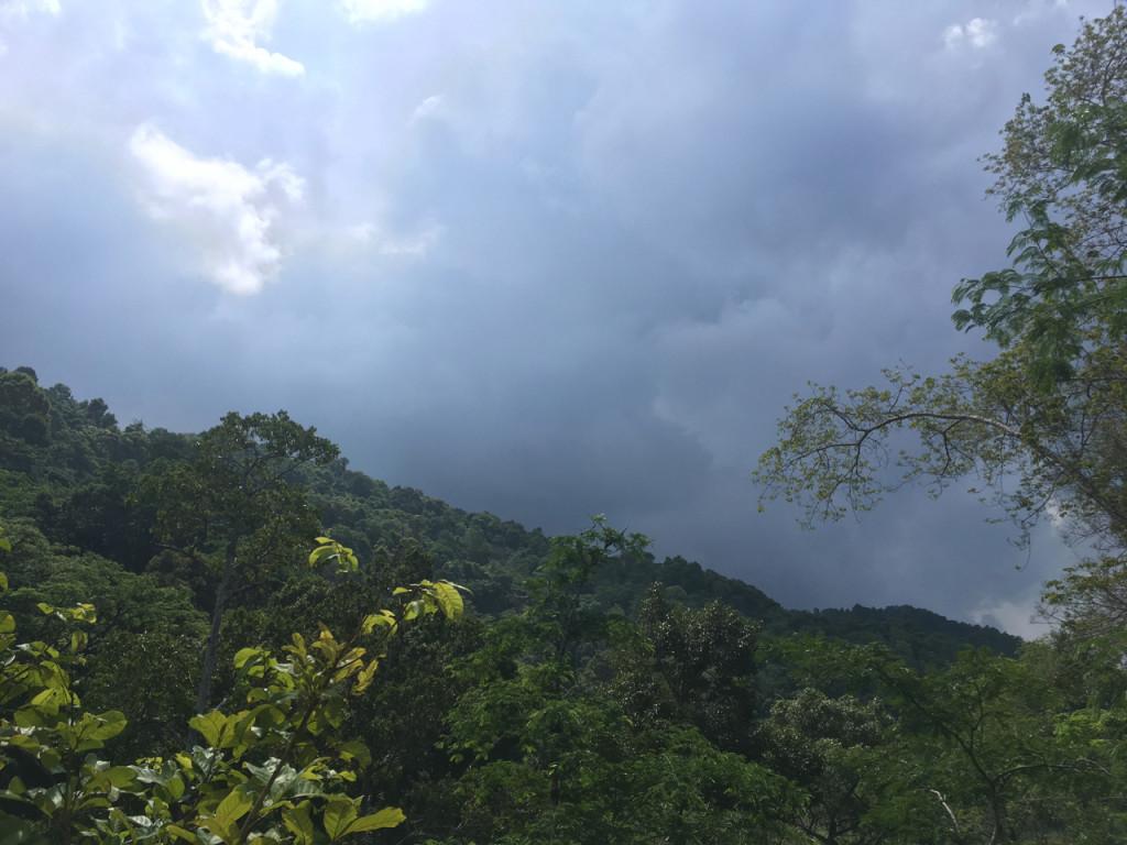 В преддверии бури